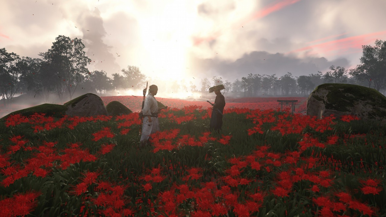 A look at Jin in a field of flowers on Iki Island.