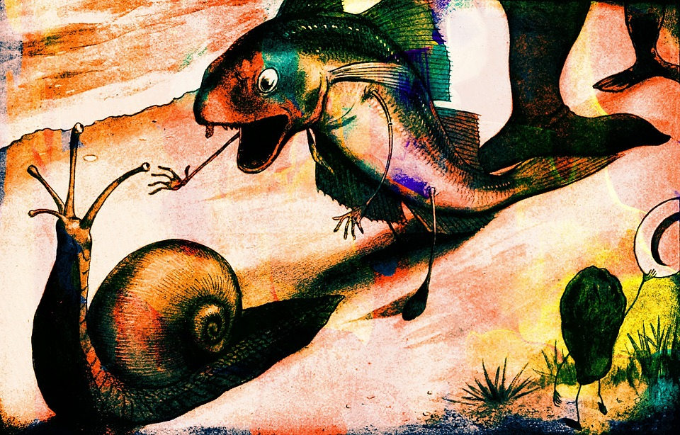 Fish with arms and legs chasing a snail