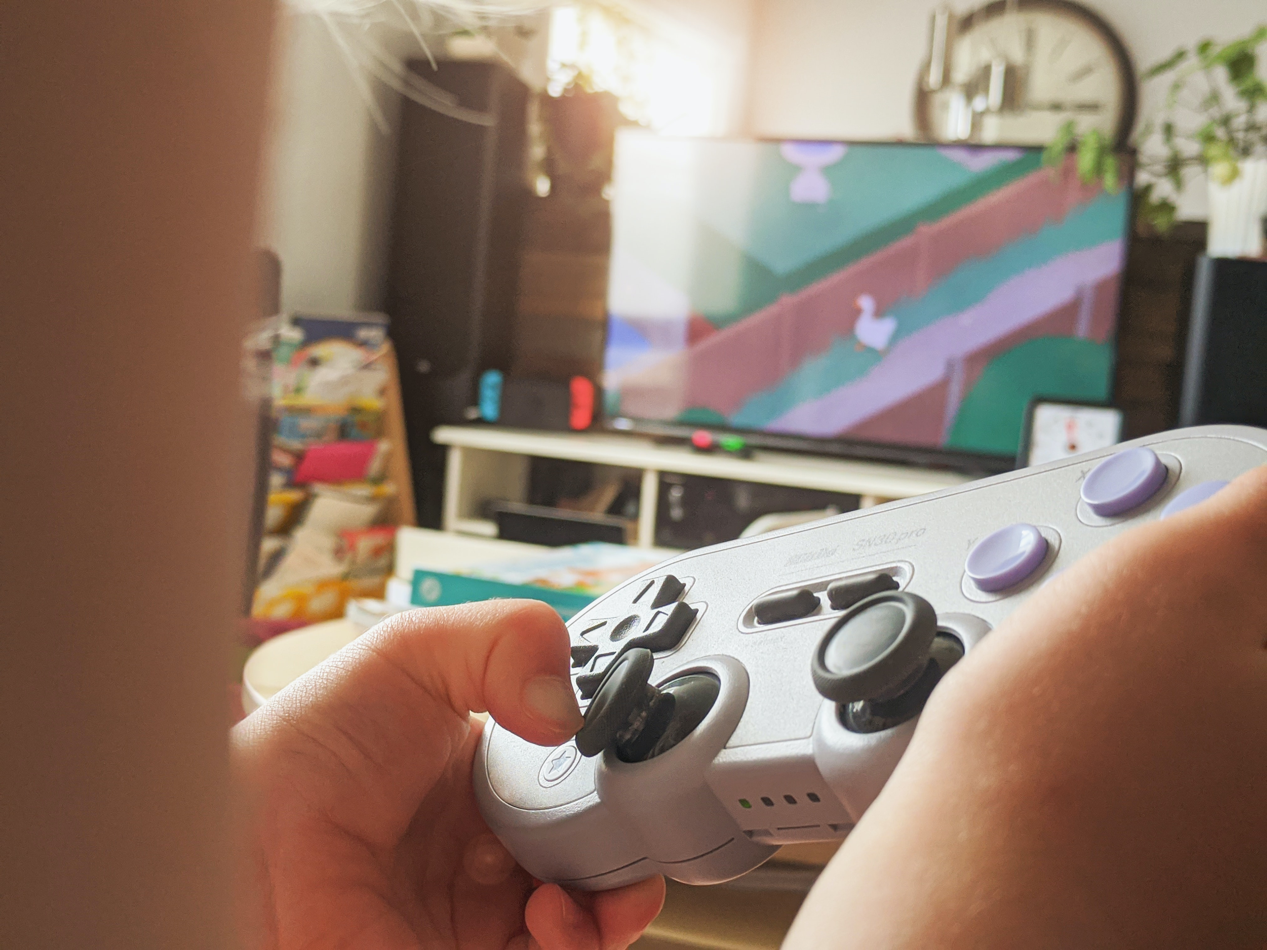 A gamer enjoying Untitled Goose Game on their TV.