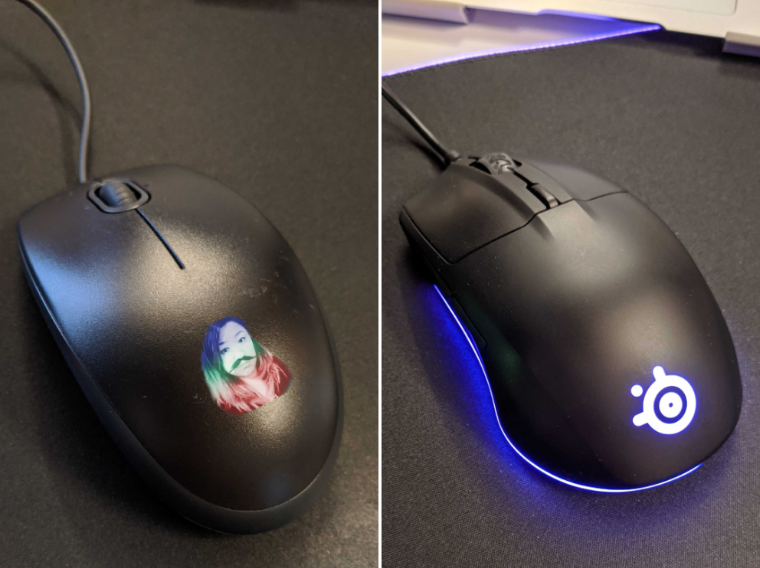 Standard mouse and gaming mouse