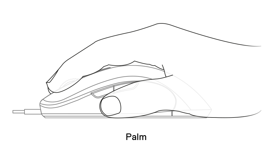 Sensei Ten palm grip example