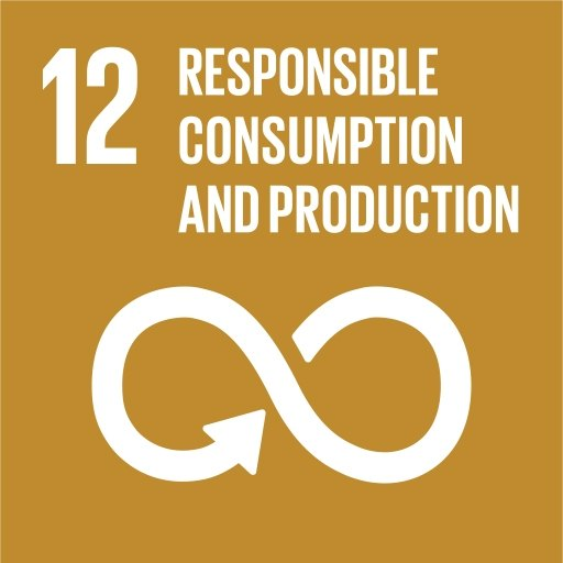 """UN sustainable development goal logo shows an infinity symbol and the text """"responsible consumption and production""""."""