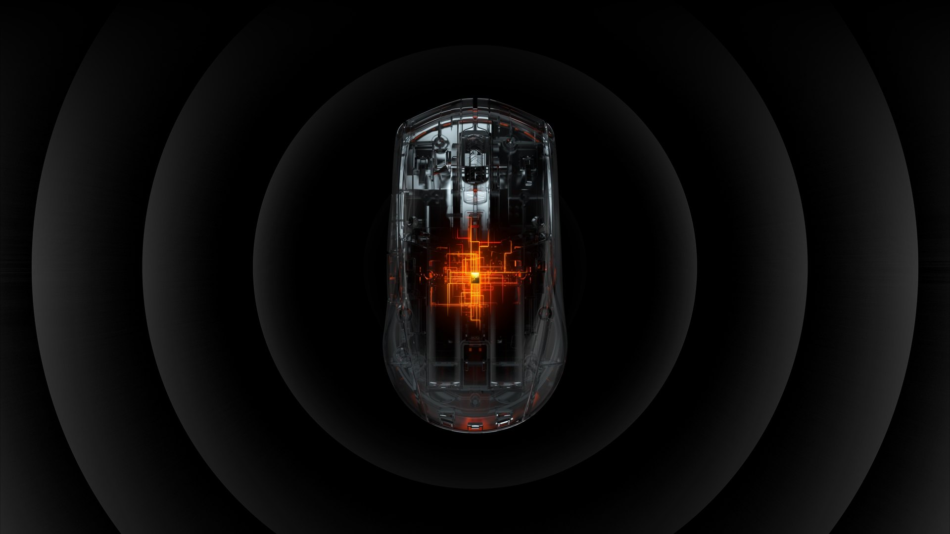 Render of the mouse in a stylized translucent look, showing the chip inside the mouse