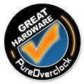 Pureoverclock Logo